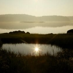 Sunrise Vinalhaven Maine photo tour Ron Rosenstock