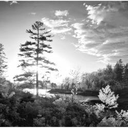 Infrared landscape Vinalhaven Maine photo tour Ron Rosenstock
