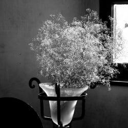 vase Czech Republic photo tour Ron Rosenstock