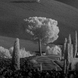 Tuscany landscape Italy photo tour Ron Rosenstock