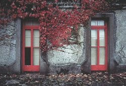 Ireland windows photo tour Tim Baskerville