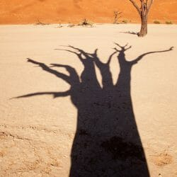 Namibia photo tour Wendy Kaveney
