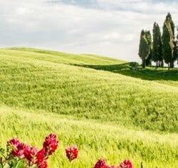 Tuscan hills Italy photo tour Charles Needle