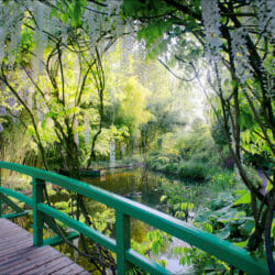 Giverny bridge water hoto tour Nancy Ori
