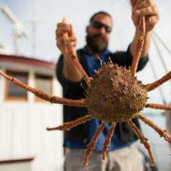Baja and Sea of Cortez Mexico photo tour Tom Bol crab