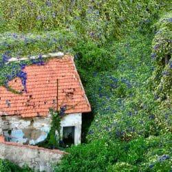 Porto Portugal photo tour J Steedle