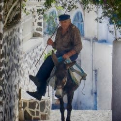 Santorini Greece donkey photo tour Ron Rosenstock