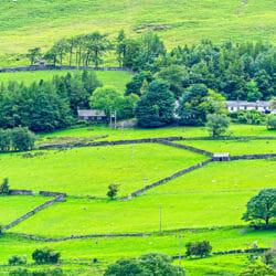 Green Countryside Lake District England UK photo tour R Buchbinder