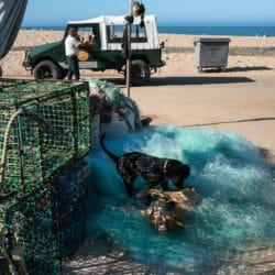 Portugal fisherman photo tour K Psillas