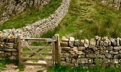 Hadrians Wall UK Maureen Ferry