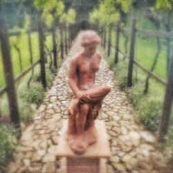 Tuscan garden Italy photo tour Charles Needle